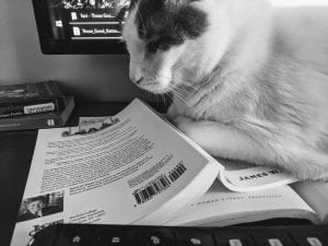 Black and white photo of a cat and books